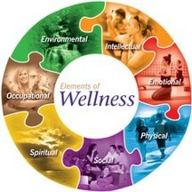 Image thats a circle that says Wellness in the middle and Environmental, Intellectual, Emotional, Physical, Social, Spiritual, and Occupational