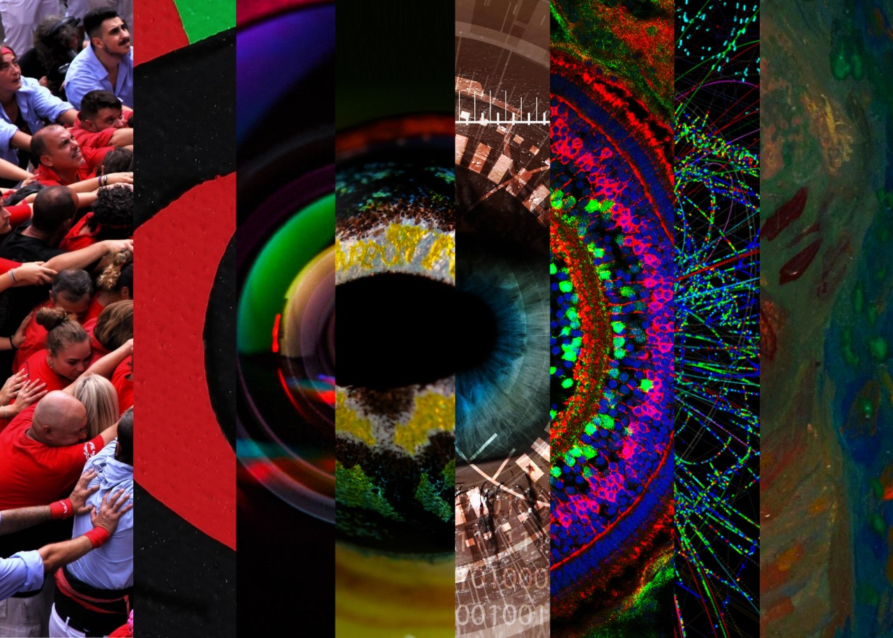 Collage of images that together make up a large eye, including images of camera lenses, crowds of people, animal eyes, confocal microscope images, and paintings of human eyes.