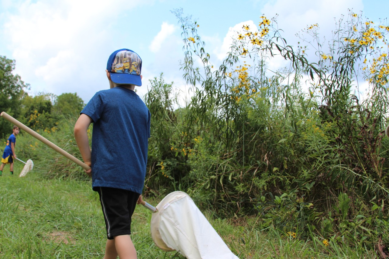 children collecting bugs at the UC Center for Field Studies